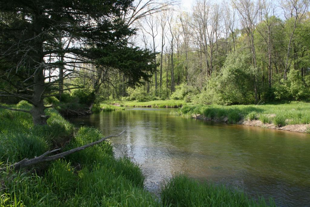 The Belle River in spring